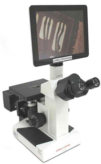 best inverted microscopes
